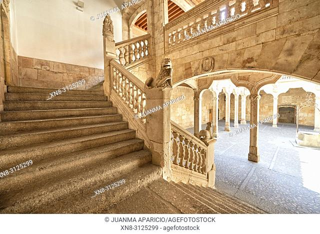 Escalera de la Casa de las Conchas in Salamanca, Salamanca City, Province of Salamanca, Spain, Europe