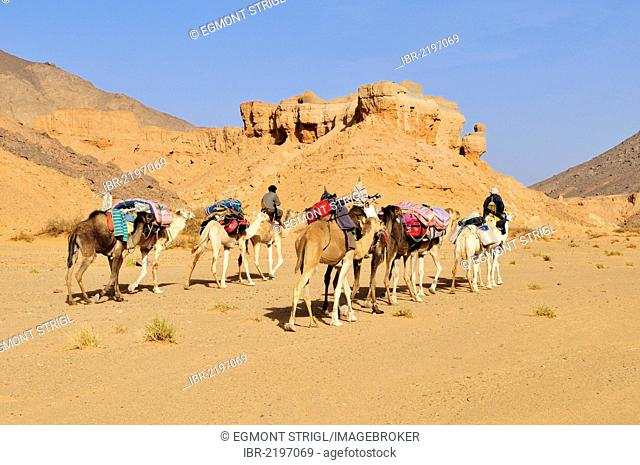 Touareg camel caravan travelling through a canyon of Adrar Tekemberet, Immidir, Algeria, Sahara, North Africa