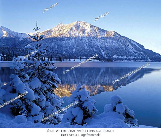 Walchensee lake below Mt. Herzogstand, Upper Bavaria, Bavaria, Germany, Europe