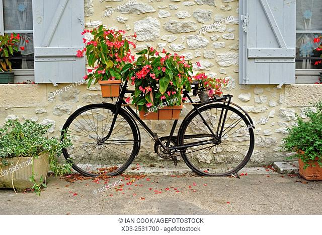old bicycle used as planter, Issigeac, Dordogne Department, Aquitaine, France