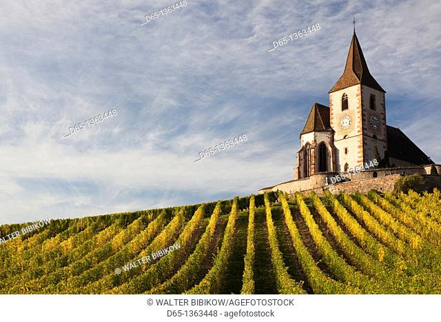 France, Haut-Rhin, Alsace Region, Alasatian Wine Route, Hunawihr, town church, autumn
