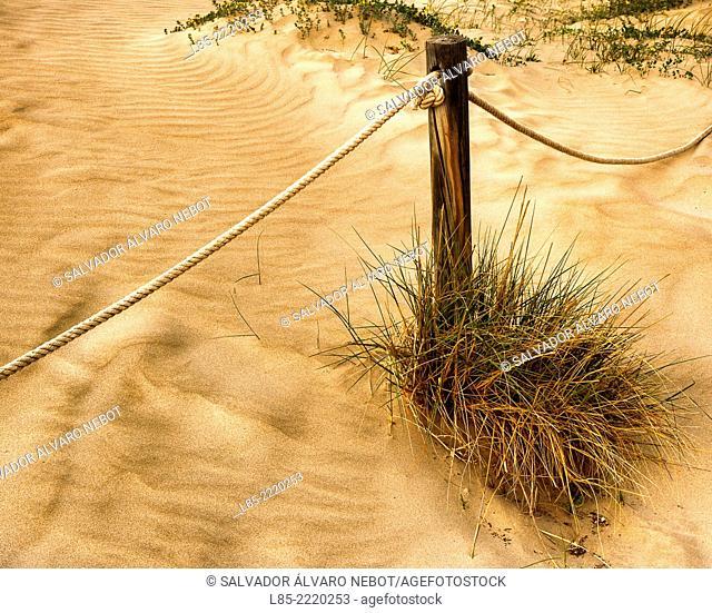 Dunes, Canet de Berenguer Beach, Valencia, Spain