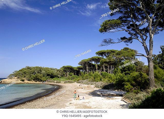 Plage d'Argent or Silver Beach Porquerolles Island Lerins Islands Var Côte d'Azur French Riviera France