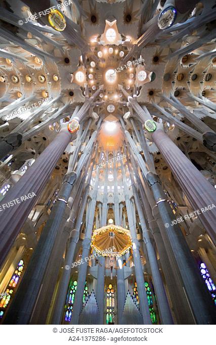 Spain, Catalonia, Barcelona City, Sagrada Familia Temple inside, Roof