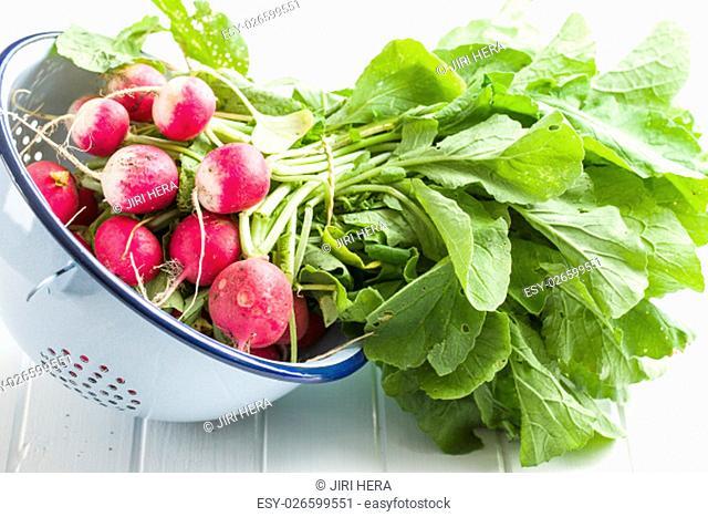 Fresh radishes in colander. Red radishes vegetable