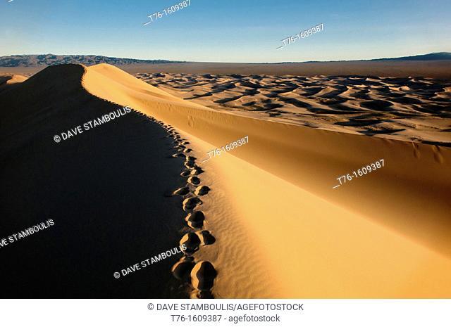 the sand dunes of Khongoryn Els at sunset in the Gobi Desert of Mongolia