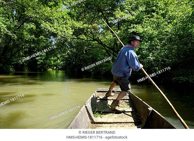 France, Bas Rhin, Ebersmunster and Muttersholtz region, the Ried, the boatman Patrick Unterstock in a small flat wooden bottom boat on the Ill river