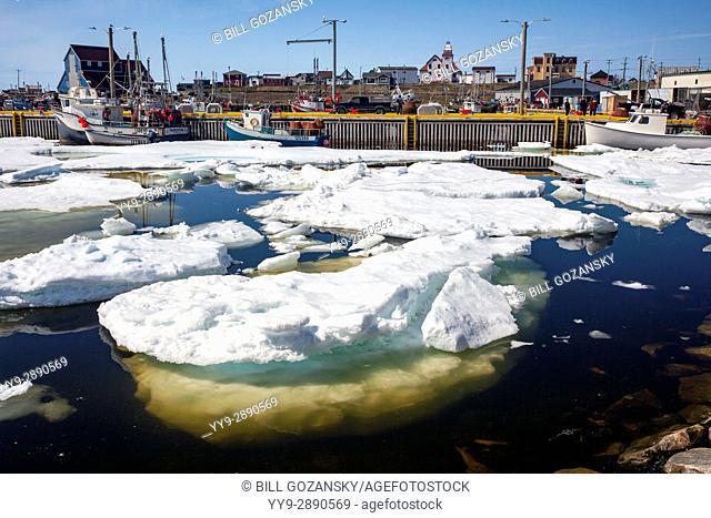 Sea Ice in Bonavista Harbour, Newfoundland, Canada