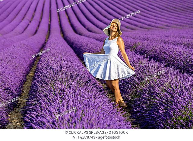 Woman in white in a lavender field. Plateau de Valensole, Alpes-de-Haute-Provence, Provence-Alpes-Cote d'Azur, France, Europe