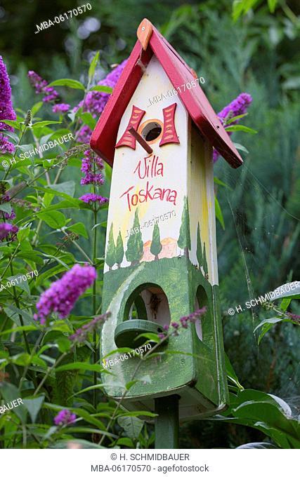 nesting box on butterfly bush