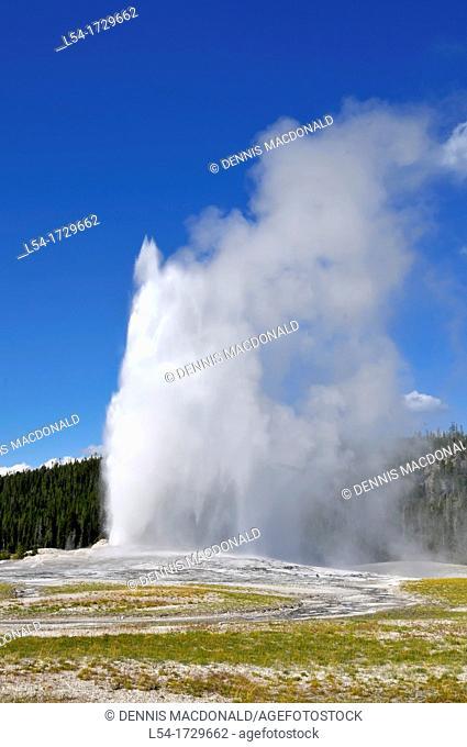 Old Faithful Geyser Yellowstone National Park Wyoming WY United States