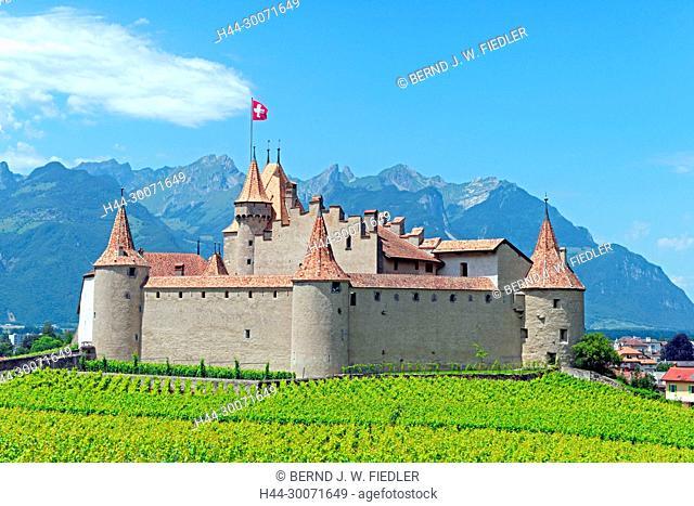 Chemin de la Poya du Château, Schloss Aigle, Ortsansicht, Weinfelder