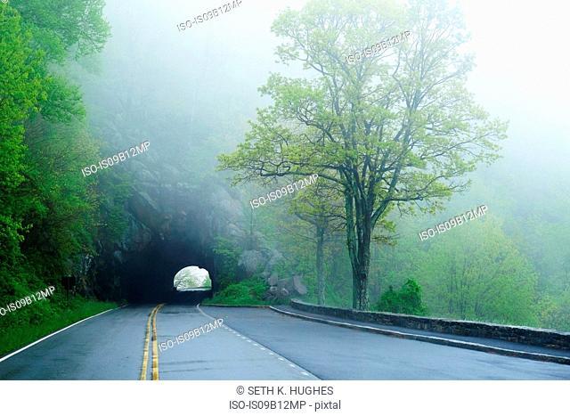 Tunnel on misty empty road, Shenandoah National Park, Virginia, USA