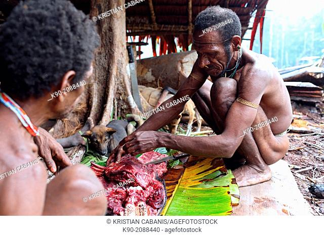 Kombai men slaughtering a pig, Papua, Indonesia, Southeast Asia