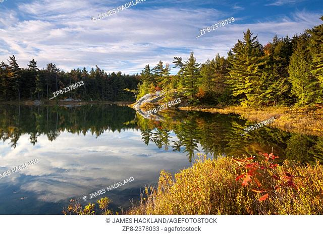 A forested lake scene at sunrise. Killarney Provincial Park, Ontario, Canada