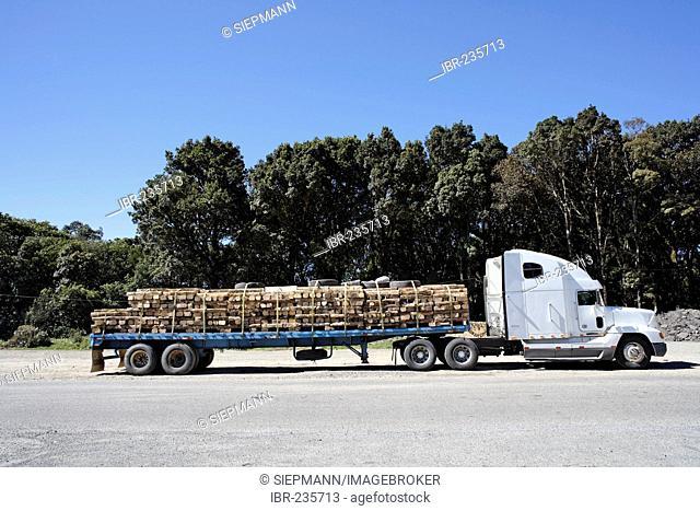 Logging truck at Interamericana, Panamericana in Ojo de Agua, Costa Rica
