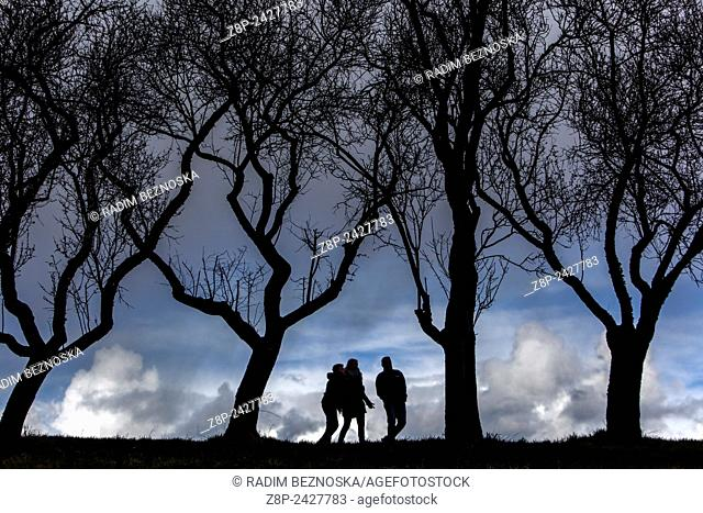 silhouettes of people in the orchard trees without leaves