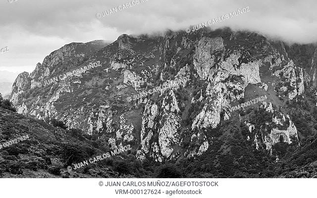 Picos de Europa National Park, Asturias, Spain, Europe