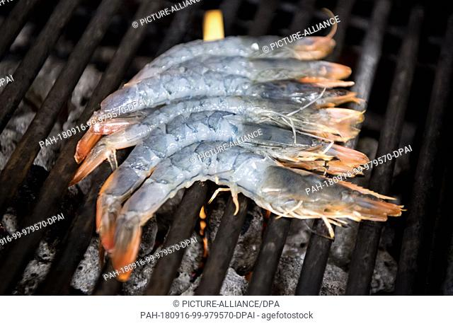 14 September 2018, Bavaria, Langenpreising: Prawns (Pacific White Shrimp) from the Crusta Nova shrimp farm are lying on a grill in the Spatenhaus