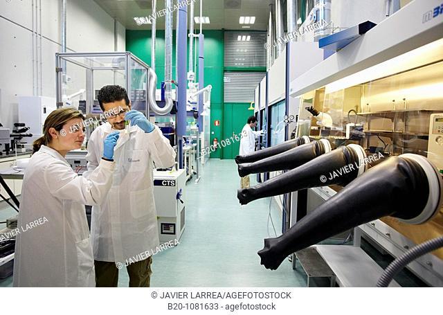 Synthesis Laboratory, CIC nanoGUNE Nanoscience Cooperative Research Center, Donostia, Gipuzkoa, Euskadi, Spain