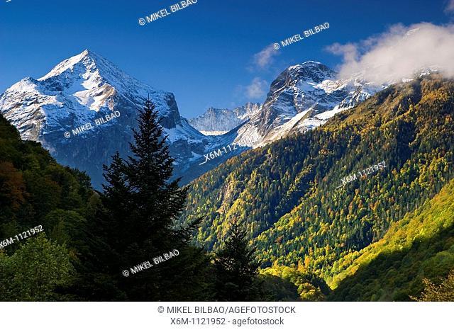 Mountains and forest in autumn  Tuc de Molieres and Tuca Blanca de Pomero mountains  Artiga de Lin  Aran Valley  Pyrenees mountain range  Lerida province...