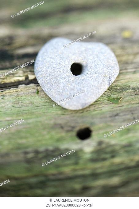 Stone with hole in it on mossy wood, extreme close-up