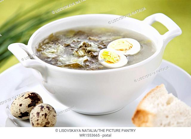 Sorrel soup with quail egg on green background