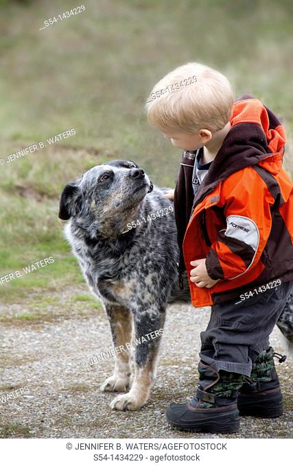 A three-year-old boy with a Blue Heeler, or Australian Cattle Dog