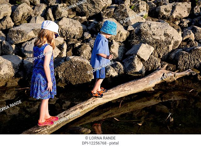 Children walking on a log over the water; Chilliwack, British Columbia, Canada