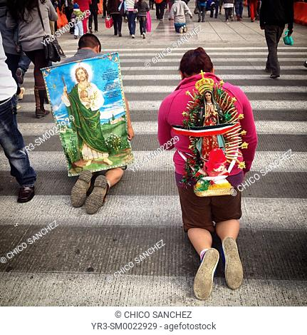 Pilgrims carrying religious images walk on their knees during the annual pilgrimage to the Basilica of Our Lady of Guadalupe in Mexico City, Mexico
