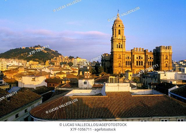 Málaga Andalusia  Spain: Panoramic of the city and the cathedral