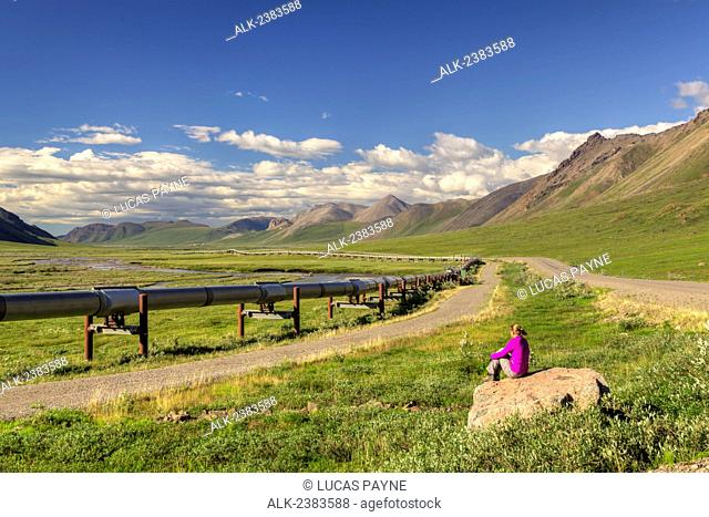 Woman taking in the view of the Trans Alaska Oil Pipeline and the Brooks Range on the North Side of Atigun Pass, Arctic Alaska, Summer