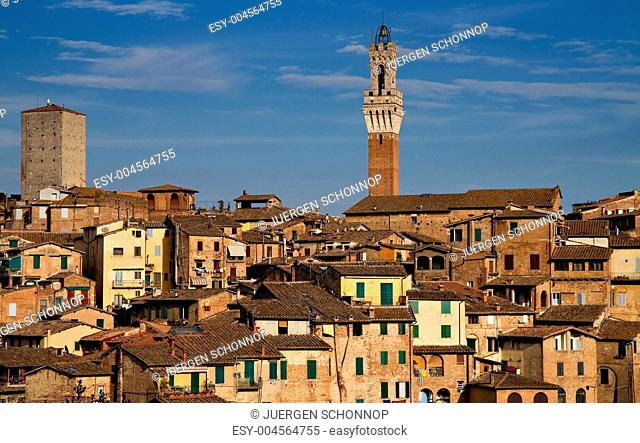 Panorama of Siena with Palazzo Pubblico