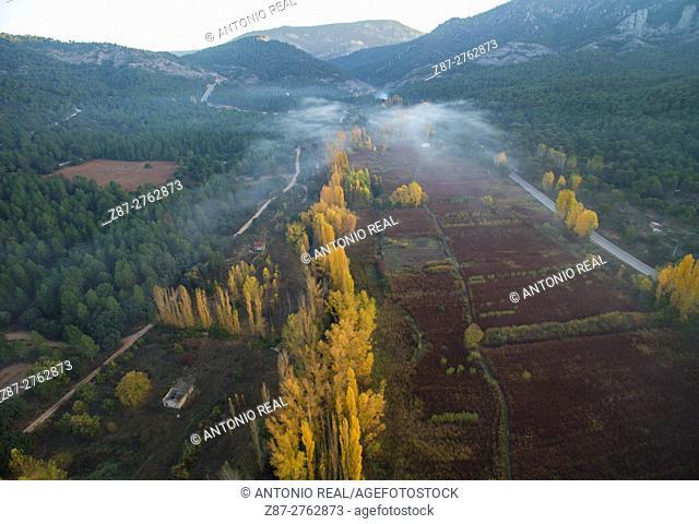 Aerial photography using a drone: Cañamares and willow fields, river Escabas valley, Serranía de Cuenca, Cuenca province, Castilla-La Mancha, Spain