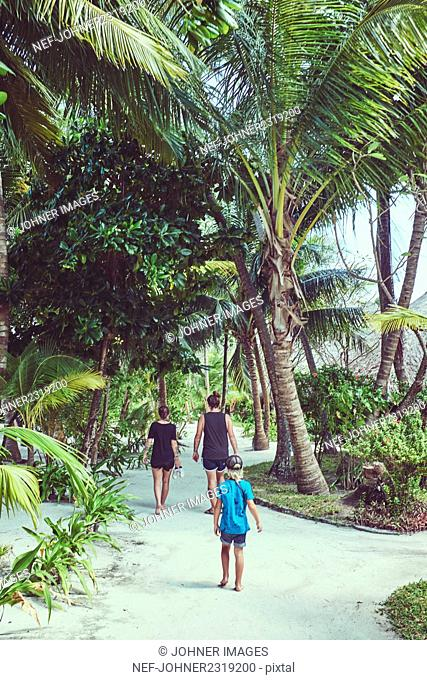 Family walking under palms