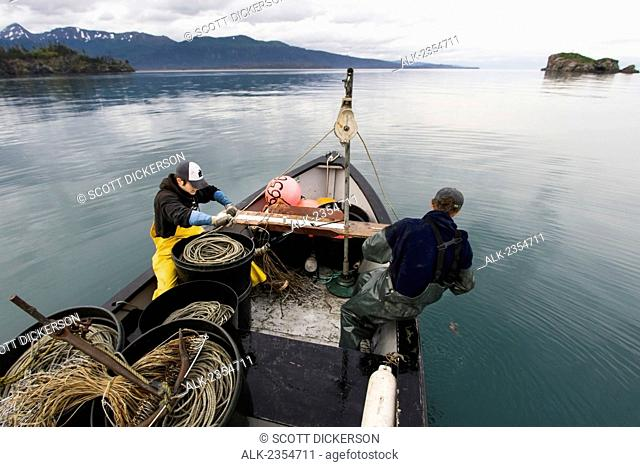 Commercial halibut fishing by hand using longline gear out of an open skiff in Kachemak Bay, Kenai Peninsula; Alaska, United States of America