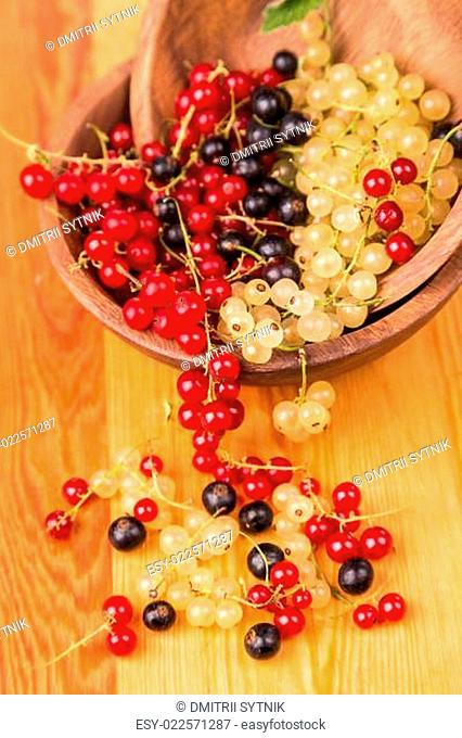 currants different colors - red, black, white