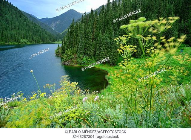 View of the Kolsai lake number 1, Kungey Alatau, Kazakhstan