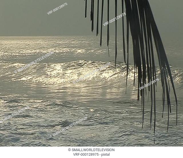 beach view of sea with palm leaf, ws. Elmina, Ghana