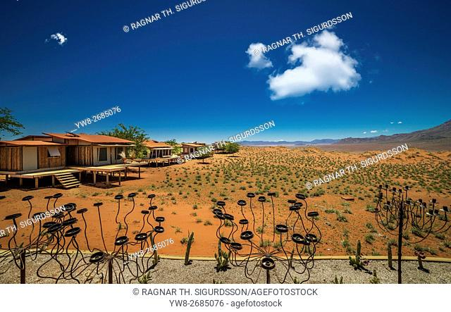 Landscape by Wolvedance Dune Lodge, Namibia, Africa