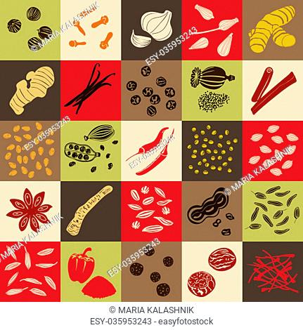 Spices hand drawn vector squared icon big set. Popular cooking spices chili pepper, cinnamon, cloves, cumin, dill, garlic, mustard, paprika, Poppy, star anise