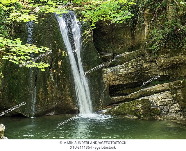 Janets Foss waterfall in woodland near Malham Yorkshire Dales England