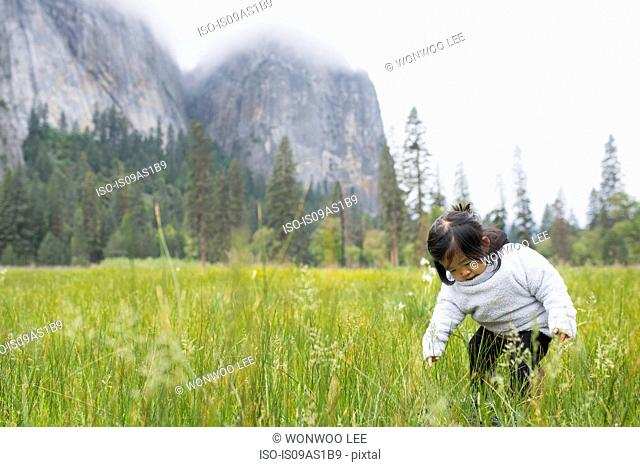 Female toddler crouching in meadow, Yosemite National Park, California, USA