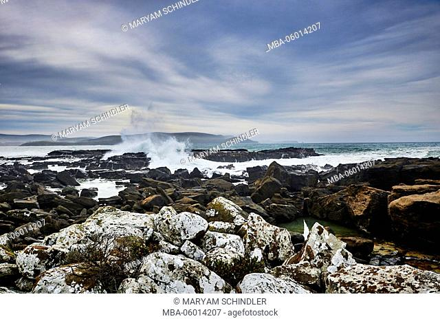 New Zealand, south island, southern scenic route, the catlins, jagged coast, waves whip against the rocks