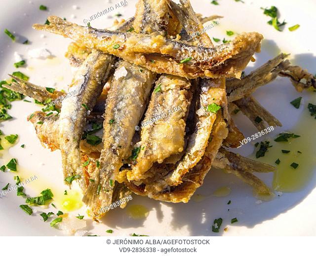 Food, fried anchovies. Pasai Donibane. Fishing village of Pasajes de San Juan. San Sebastian, Bay of Biscay, province of Gipuzkoa, Basque Country, Spain, Europe