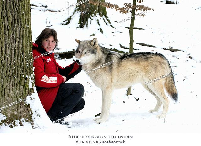 Animal trainer Bea Belenyi at the Wolf Science Centre with one of the wolves