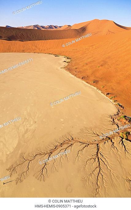 Namibia, Hardap region, Namib desert, Namib-Naukluft national park, Namib Sand Sea listed as World Heritage by UNESCO, near Sossusvlei sand dunes, Deadvlei