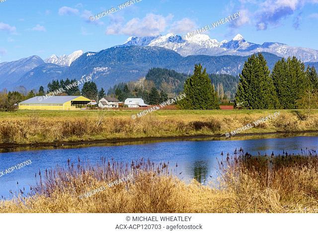 Farm and Alouette River, Pitt Meadows, British Columbia, Canada