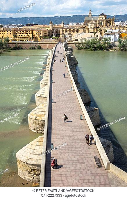 Looking across the Guadalquivir river and Roman bridge to the cathedral and historic centre of Cordoba, Andalucia, Spain