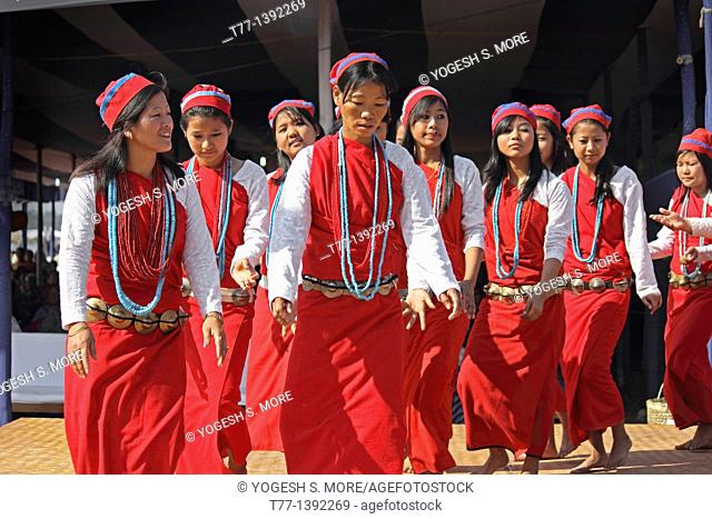 Tagin Women, Tribes Performing Dance at Namdapha Eco Cultural Festival, Miao, Arunachal Pradesh, India